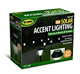 Best Fan Creations Fan Creations Outdoor Fans - Garden Creations JB5629 Solar-Powered LED Accent Light, Set Review