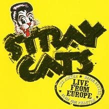 Live in Bonn 29.07.04