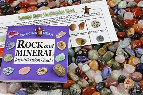 Dancing Bear Trommelstein Poliert natürlichen Gem Steinen + Educational ID Bogen 24Seite & Rock &...