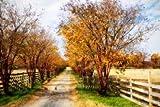 Glen Allen Farm III by Hausenflock, Alan...