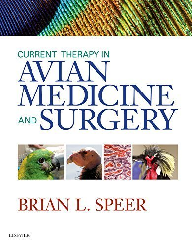 Current Therapy in Avian Medicine and Surgery, 1e by Brian Speer DVN DipECZM (Avian) DiplABVP (Avian) (2015-12-18)