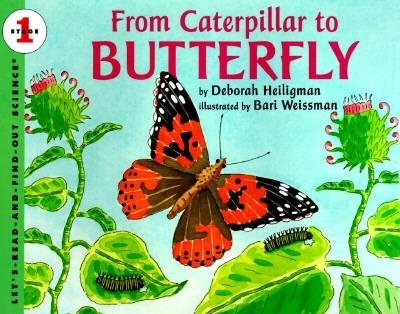 By Heiligman, Deborah ( Author ) [ From Caterpillar to Butterfly By Apr-1996 Hardcover
