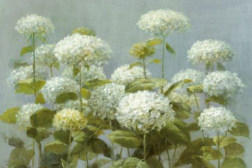 white-garden-aluminium-dibondbild-hydranga-de-danhui-nai-134-x-90-cm-jusqu-les-bords-de-reproduction