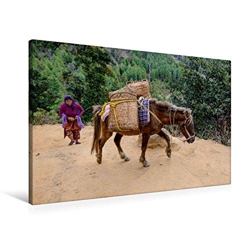 Premium Textil-Leinwand 90 cm x 60 cm quer Warentransport zum Taktshang Lhakhang (Tigernest-Kloster) bei Paro, Bhutan | Wandbild, Bild auf Keilrahmen, Fertigbild auf echter Leinwand, Leinwanddruck