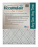 accumulair Platinum Merv 11Air Filter/Ofen Filter (6Stück), FA23.5X30.75X0.5A_6