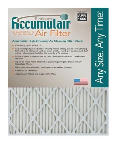 Ofen-filter 20x24x2 (accumulair Platinum Merv 11 Air Filter/Ofen Filter (2 Pack), FA20X24X4_2)