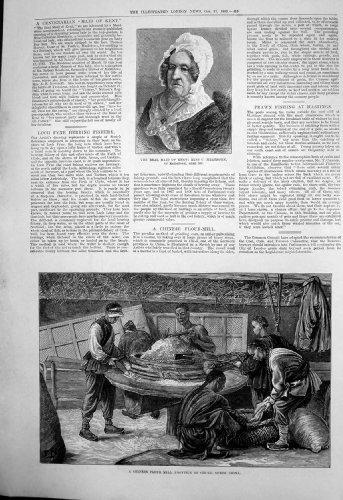 Stampa Antica del Peperoncino rosso del Mulino Da Grano di Cinese di Sig.na C Heathorn Maidstone Aged 100...