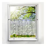 BAILEY JO Schlaufen Scheibengardine mit Ausbrenner Pteris Raffrollo Voile Transparent Vorhang (HxB 45x120cm, Grau)