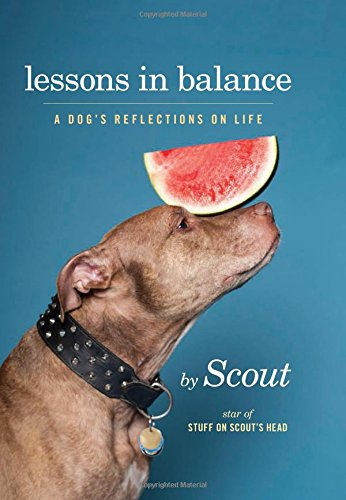 lessons-in-balance-a-dogs-reflections-on-life
