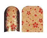 Cesars Nail App 25 Hot (24 Finger)