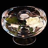 Runde Glas-Schale Roxy 75 Höhe 11cm ø 17cm. Flache Glasschale auf Fuß als Deko-Schale von Glaskönig - 3