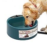 PETEMOO Ciotola per Acqua per Animali Riscaldata, Ciotola per Cani per Cani, A Prova di Perdite, Ciotola di Cibo per Cani di qualità Premium Vassoi, Acqua Senza Ghiaccio per Cani O Gatti