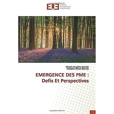 EMERGENCE DES PME : Defis Et Perspectives