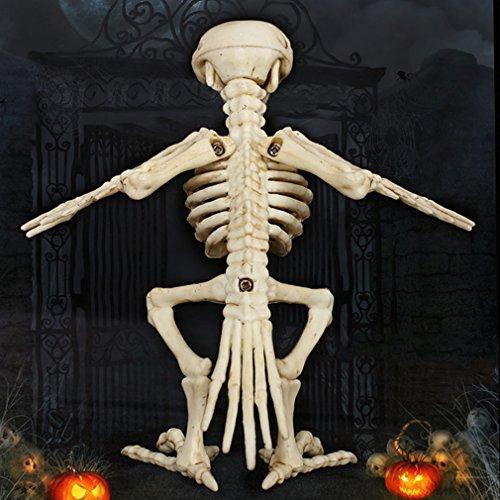 creatspaceE Knochenfarbenes Skelett Rabe 100% Kunststoff Tierskelett Knochen für Horror gruselig Halloween Dekoration Event & Party Supplies Knochenfarben