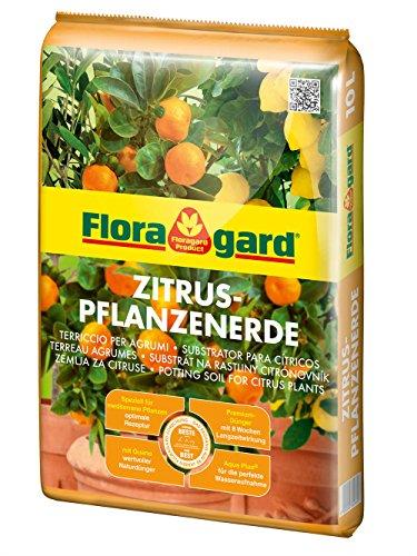 Floragard Gebrauchsfertig