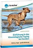Einführung in das Kinesiologische Taping bei Hunden: Kleines Tape -  Große Wirkung