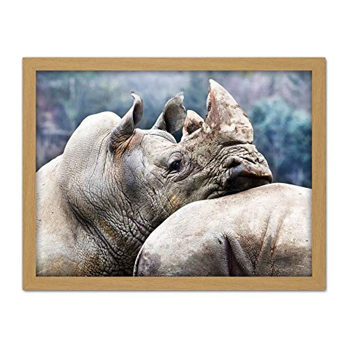 Marion Rhinoceros Leaning Head Animal Wildlife Photo Artwork Framed Wall Art Print 18X24 Inch Tier Fotografieren Wand - Fine-art-tier-artwork