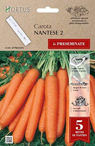 Hortus Le 07PRE030N Nantese 2 Carota, Nastro Preseminate, 13x0.7x20 cm