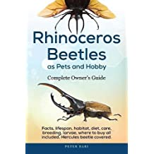 Rhinoceros Beetles as Pets and Hobby - Complete Owner's Guide: Facts, lifespan, habitat, diet, care, breeding, larvae, where to buy, Hercules beetle all covered.