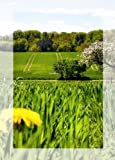S�n Gross 12er Set Postkarten Geschenkkarten Gru�karten Wiese und Landschaft