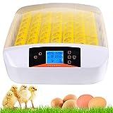 Kaimus Brutmaschine Vollautomatisch Hühner Inkubator Brutkasten Motorbrüter Brutgerät Automatisch Brutapparat für 56 Eier Flächenbrüter