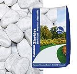 Marmorkies Carrara 60-100 25 kg