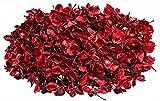 NaDeco Cotton Pods rot 250g   Baumwoll Knospen   Deko Blüten   getrocknete Naturdeko   Trockenblumen