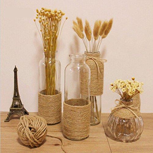 Bluelover Zakka corda della canapa di vetro vaso di fiore bottiglia ornamenti Fiore Stelo Fiori secchi Vaso -12