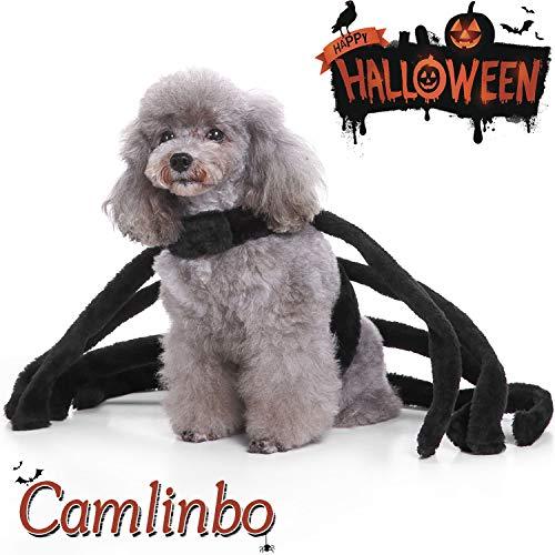 Katzen Spider Für Kostüm - Camlinbo Halloween-Kostüm für Hunde und Katzen, Spinnen-Design, Größe S (M), L( Neck :20-24