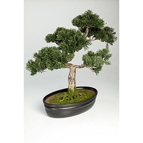 artplants - Künstlicher Bonsai Zeder in Dekoschale, 230 Zweige, 40 cm - Hochwertiger Kunstbonsai/Bonsai Ceder unecht