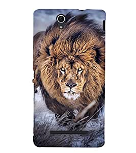 PrintVisa Designer Back Case Cover for Sony Xperia C3 Dual :: Sony Xperia C3 Dual D2502 (Beauty Of Nature)