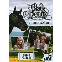 Black Beauty, Teil 06