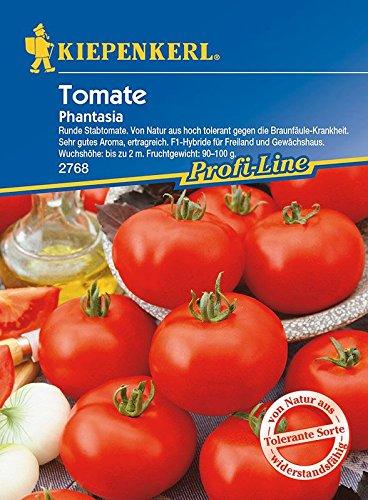 Tomaten: Phantasia F1, Lycopersicon lycopersicum - 1 Portion
