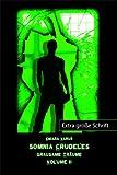 Somnia Crudeles - Band 2: Grausame Träume. Großdruck - Chiara Varus