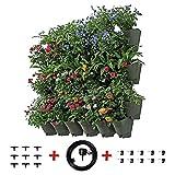 Ogni kit di prodotti contiene 12 vasi di fiori per piante da parete, ogni vaso di fiori ha 3 fodere per piante. Il prodotto ha un totale di 36 fodere per piante. Dimensione del singolo vaso di fiori: 48x18x17cm Il peso del singolo vaso di fio...