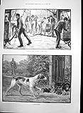 Portuali che Scaricano i Gattini 1889 del Gatto dei Cani da Caccia del Tè del Carico