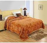 Best Life Blankets - DRaX Jaipuri Razai Microfibre Mink Double Bed Blanket Review