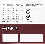 Yamaha EN11 Cordes pour Guitare électrique Acier