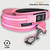 LumoLeaf LED Light up Hundeleine, Flamingo Pink, 4 ft./120 cm, USB wiederaufladbar mit wetterfesten Blinklichtern, reflektierendem Nylongürtel, 5 Farben erhältlich.
