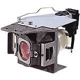 populsell RLC-079Ersatz Projektor Lampe mit Gehäuse für VIEWSONIC PJD7820HD