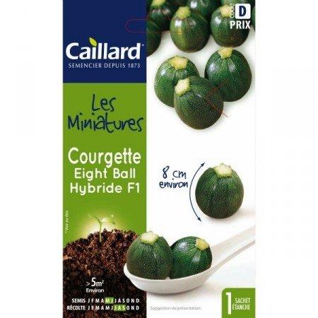 Caillard Graines mini courgette