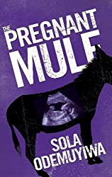 The Pregnant Mule