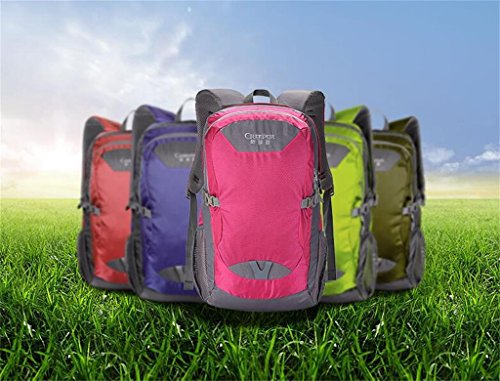 borse alpinismo viaggio zaino borsa sportiva borsa a tracolla femminile di borsa tracolla studenti delle scuole superiori di sesso maschile ( Colore : Rosso , dimensioni : 40L ) Rosso