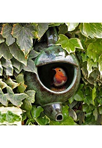 Wildlife World Robin Teekanne Nester