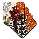 BLN Japanische Woodblock Blumen von Tanigami Konan–Große bunte Dahlien in Light Lavendel, Burgund und Orange–Untersetzer, Gummi, Orange, set-of-8-Soft