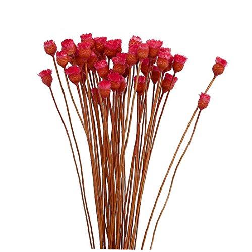 Artificiale fiori secchi decorativi everlasting flowers bouquet simulazione rami secchi 1 grappolo rosso