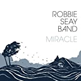 Songtexte von Robbie Seay Band - Miracle