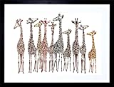9x7 '' DT GROUP OF GIRAFFES FRAMED ART PRINT PICTURE MOUNT PHOTO F97X289