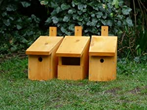 Nest Boxes set of 3 Sparrow Robin Bluetit