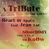 Somebody That I Used to Know: A Tribute to Gotye (feat. Jean Luc)